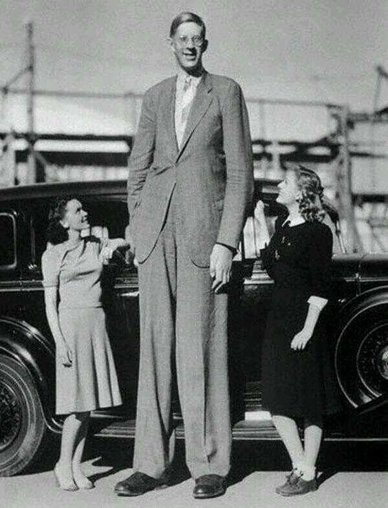 """Robert Wadlow, El Gigante de Illinois, es la persona más alta de la historia con  272 cm/ 8' 11"""". 1940."""