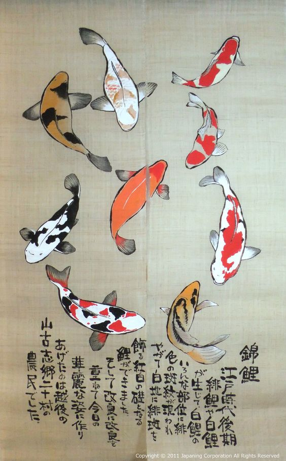 Noren with koi design v all things japanese for Japanese koi fish drawing