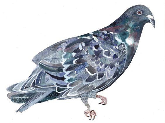 Rock Dove - Original painting. 85.00, via Etsy.