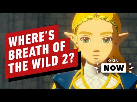 Pin By Urbosa On The Legend Of Zelda Hyrule Warriors Calamity Warrior