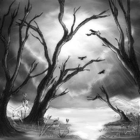 Photoshop a Dark Nature Picture.