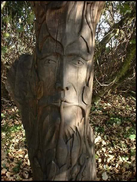 Carving wood and tree on pinterest