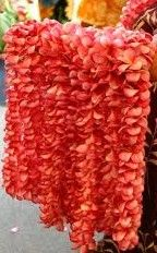 leis for all the guests