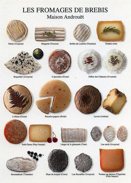 Les fromages de brebis: