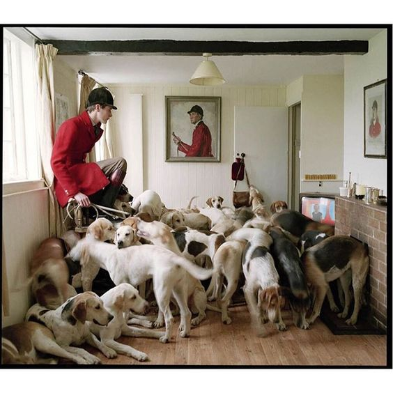 Otis Ferry & his foxhounds photographed by Tim Walker in Shropshire, UK for…