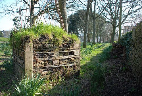 One of our insect hotels at Freedom Fields Park, Plymouth.