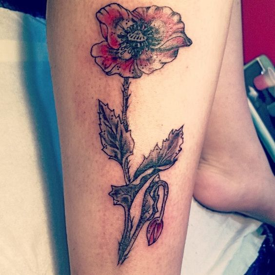 poppies tattoo