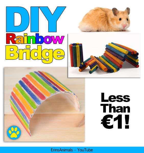 DIY Rainbow bridge fiddle stick bridge for hamsters, mice, rats, gerbils and other small pets https://www.youtube.com/watch?v=z6sE7fgSrK0