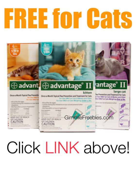 Advantage II Coupons & Deals. Give your pets the upper paw against fleas with Advantage II flea-control treatments from Bayer. Look for Advantage II coupons to .