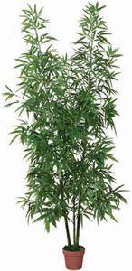 Kunstplant bamboe 200cm hoog 50cm breed een natuurlijke sfeer bij u thuis, ideaal om te decoreren, onderhoudsvriendelijk, hoogste kwaliteit en mooie afwerking