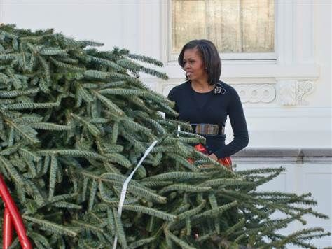 US First Lady Michelle Obama looks on as the White House Christmas tree arrives in Washington on November 23, 2012.