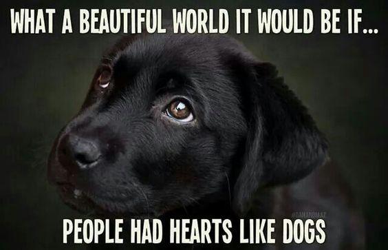 VERY TRUE ! ! !