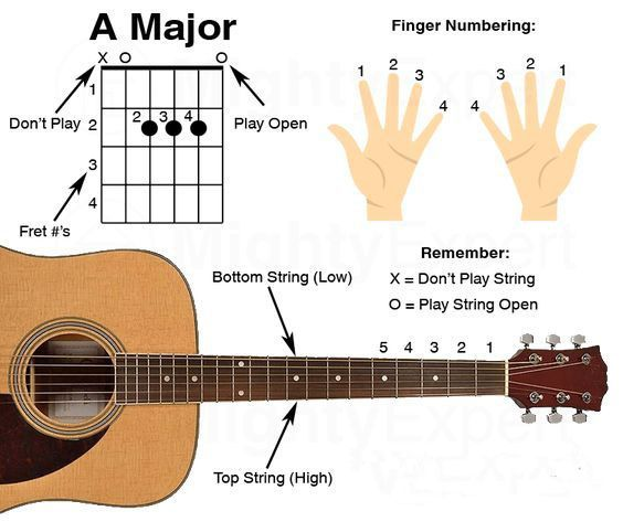 Acoustic Guitars 410320216054575467 Basic Guitar Lessons Guitar Songs For Beginners Easy Guitar Songs