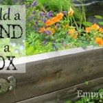 Build A Pond In A Box. Or Raised Bed.