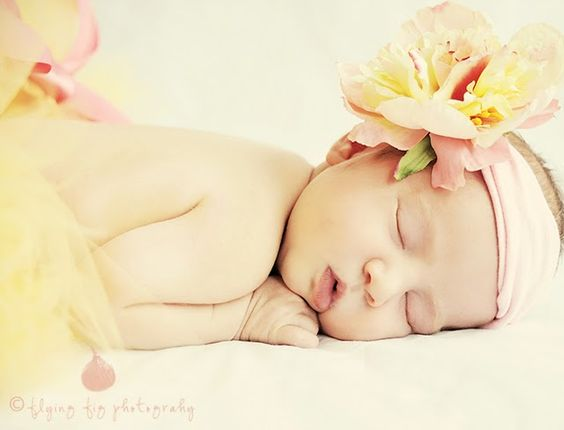 Newborn photography - Newborn Poses Newborn portraits tutu prop