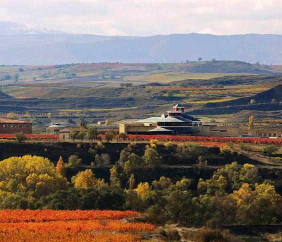 La familia Vivanco, en el que destaca el espectacular Museo de la Cultura del Vino, podrás visitar esta moderna bodega, todo un referente en innovación, Briones (La Rioja)