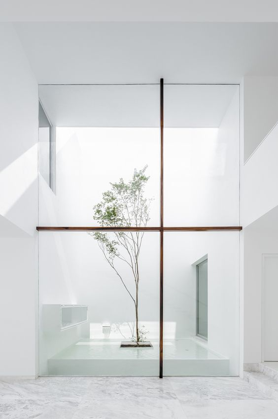Galería de Casa V / Abraham Cota Paredes Arquitectos - 4