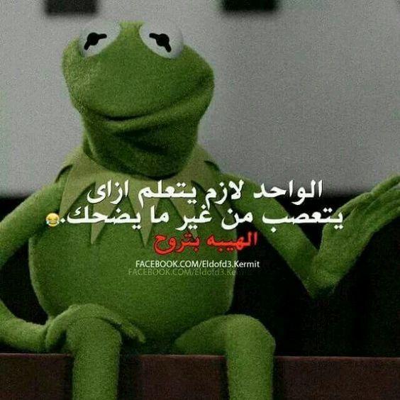 صور فيس من أجمل وأروع صور فيس بوك مع خلفيات Hd بفبوف Funny Qoutes Funny Comments Funny Arabic Quotes