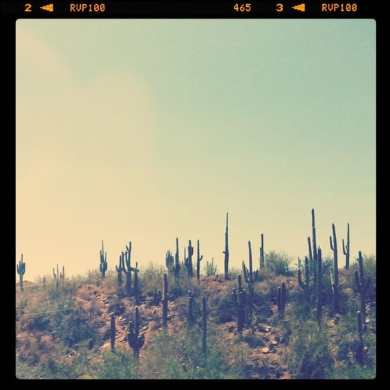 With a hat, through Arizona #ridecolorfully