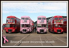 Routemasters for Breast Cancer! by Thrash Merchant™ #EasyNip