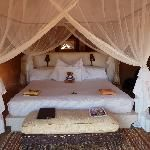 Garonga Safari Camp, African Safari. Breakfast with lioness'