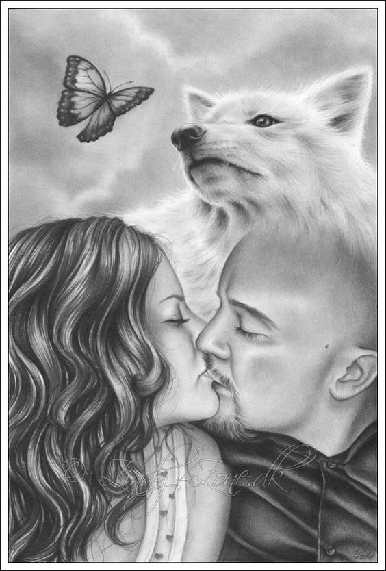 The wolf and the butterfly by Zindy on DeviantArt