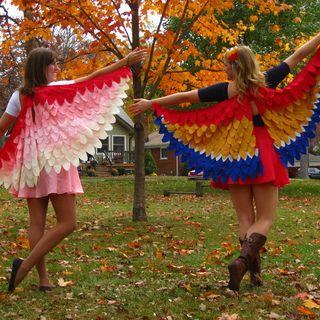 DIY: Owl Wings Costume  NattyJane's Birds of a Feather Costume Tutorial