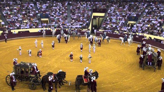 """2- Campo Pequeno -  Lisboa. NaTourada à moda antiga (à Antiga Portuguesa, há sempre este ritual). Em Portugal NUNCA se mata o touro na arena ou se cortam orelhas ou rabo (essas são as espanholas). Em todas as nossas participam FORCADOS, rapazes em grupo de 8, corajosos, sem remuneração, que enfrentam cada touro usando somente a força dos  braços para o   """"pegar"""" (as PEGAS). Alguns infelizmente sofrem colhidas, partem braços, clavículas ou ficam tetraplégicos (graças a Deus são pouquíssimos)."""