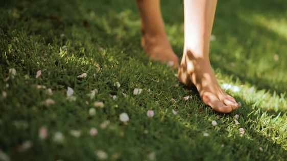 barefoot on the grass: