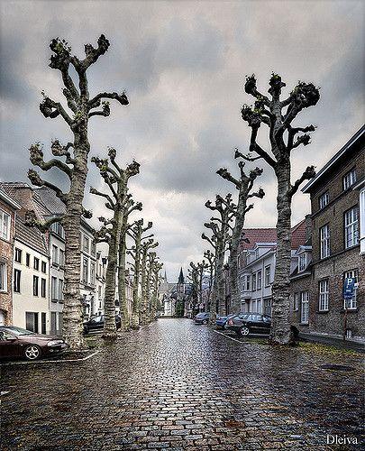 https://flic.kr/p/6d1CcD | Brugge (Belgium) | Mi colección de Belgica/ My Belgium's collection  dleiva.com/