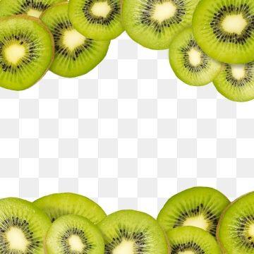 Kiwi Slice Fresh Summer Fruits Frame And Border Fruit Vector Design Png Transparent Clipart Image And Psd File For Free Download Summer Fruit Fruit Vector Fruit
