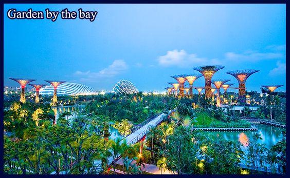 Gardens by the Bay lung linh huyền ảo vào ban đêm