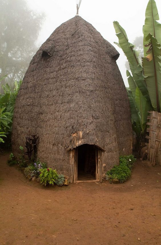 Africa | A traditional Dorze beehive homestead at Checha, Ethiopia | © Adam Lees: