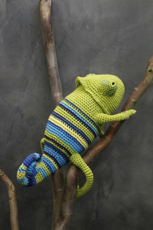 Crochet Chameleons : ... chameleon adorable crocheted reptiles and more crochet chameleons