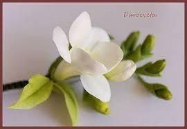 Resultado de imagen de цветочная феерия