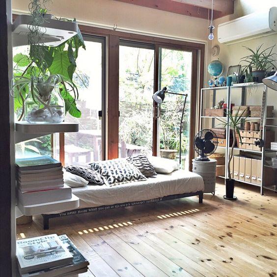 yururi-8239223さんの、リプサリス,フロアライト,見せる収納,収納,扇風機,地球儀,クッション,ソファ,IKEA,無印良品,ウンベラータ,関西好きやねん会,NO GREEN NO LIFE,エアプランツ,アロエ,コンシンネ,ニトリ,Overview,のお部屋写真