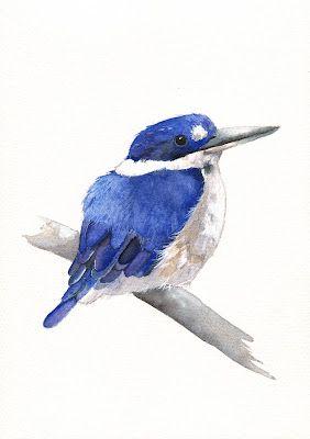 Louise De Masi watercolor  Kingfisher