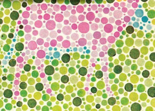 essay on colour blindness