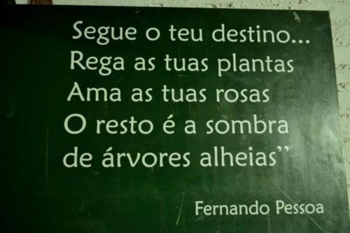 Fernando Pessoa <3: