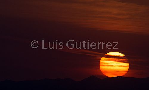 Galería de luis Gutierrez PUNKO