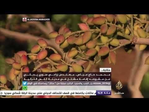 حكاية مهندس زراعي سوري يحكي عن مشروعه إقامة مشتل في مدينة كلس التركية Youtube Alsa Lockscreen Lockscreen Screenshot