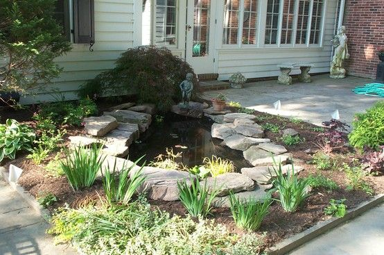 Small kidney shaped pond my landscape design projects for Pond shape ideas
