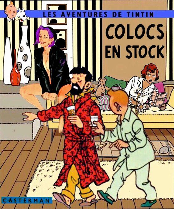Tintin Colocs en stock: