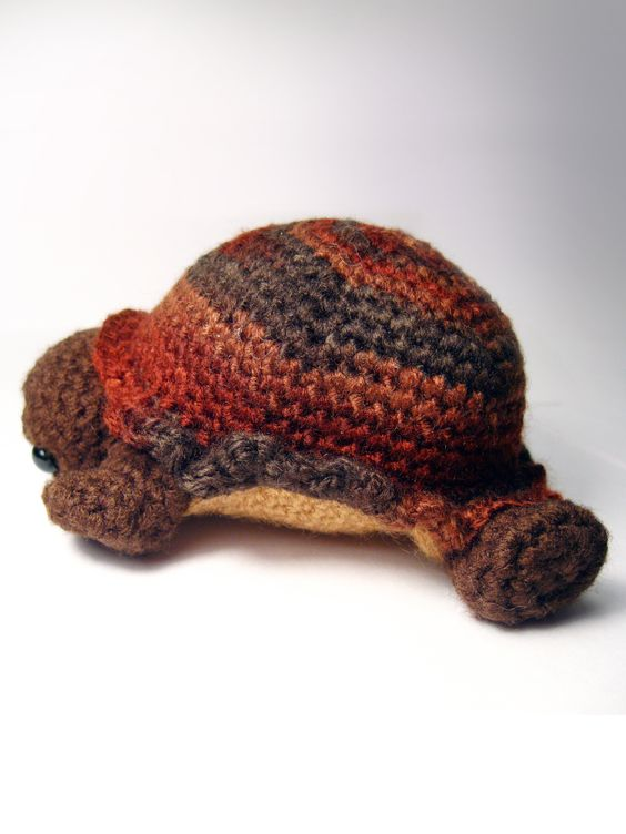 Shy the Tortoise by Karissa Cole 2013 promo 3