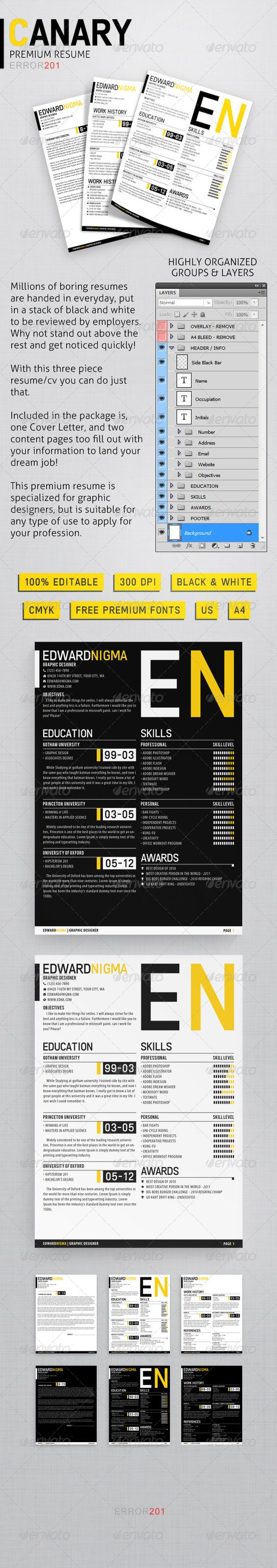 canary premium resume classy fonts and timeline canary premium resume love the layout of this one really clean and