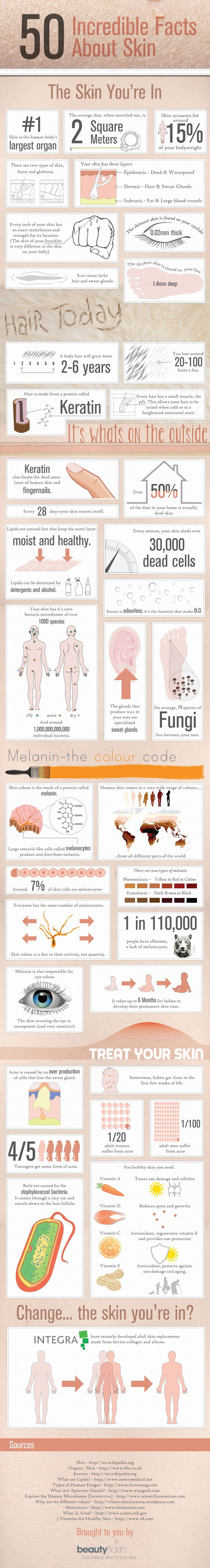 Here is a very interesting infographic from UK online beauty shop Beauty Flash with 50 interesting facts about the skin you are in.