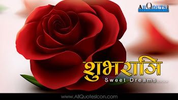 Images Of Flowers Shayari Love Shayari Images Wallpapers Quote In Images And Hd Images Of The Flowers Rose Flower Wallpaper Rose Flower Hd Rose Flower Photos
