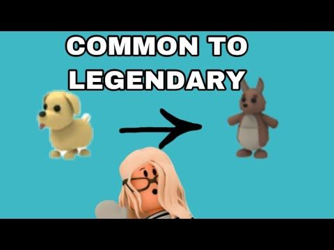 Common To Legendary Roblox Adopt Me Izzyroseroblox Youtube In