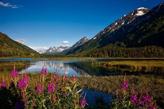 Forêt Nationale Chugach, Alaska, Paysage, Scénique