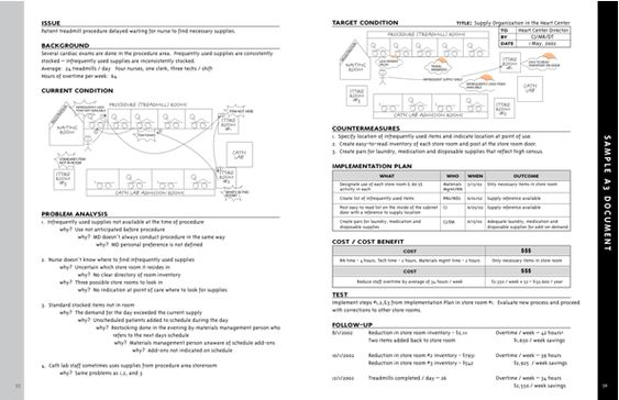 Example A  Lean    Sample Resume And Template